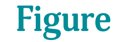 iFigure Accounting Specialists